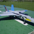 F18 Hornet v Wilfried